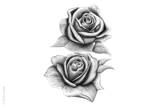Illustration Dessin Roses 001